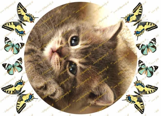 Mačiatko kruh - jedlý obrázok oblátka na tortu