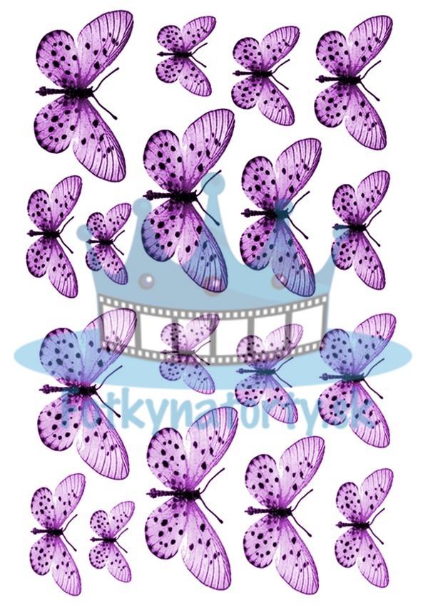 Jedlé obrázky motýle fialové - dekorácie na muffiny, na tortu, zákusky- 18 ks