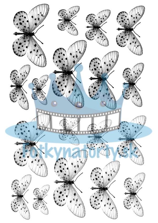 Jedlé obrázky motýle sivé - dekorácie na muffiny, na tortu, zákusky- 18 ks