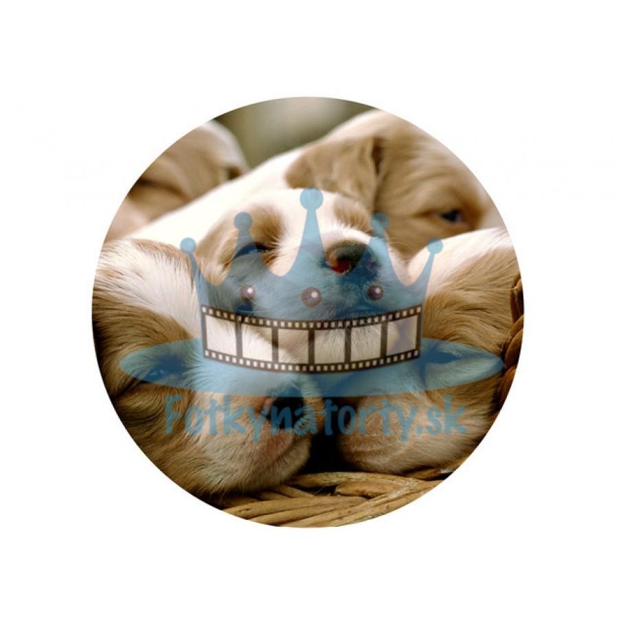 Šteniatka - jedlý obrázok/ oblátka na tortu