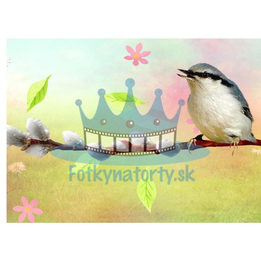 Bahniatka a vtáčik - jedlý obrázok / oblátka na tortu