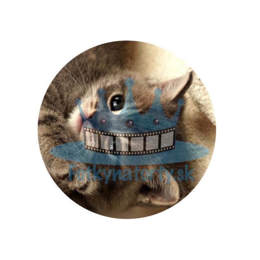 Mačiatko kruh - jedlý obrázok/ oblátka na tortu / Fotky na Torty