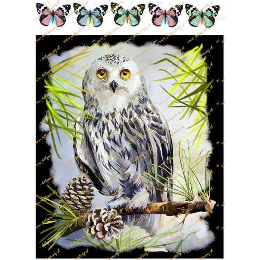 Jedlý obrázok na tortu sova + dekorácie motýle